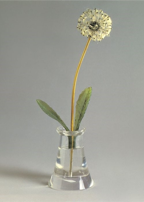 Fine-Flower-Dandelion-a-symbol-of-impermanence-of-life-made-of-natural-down