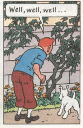 well-well-well-tintin-e1505153950421.png